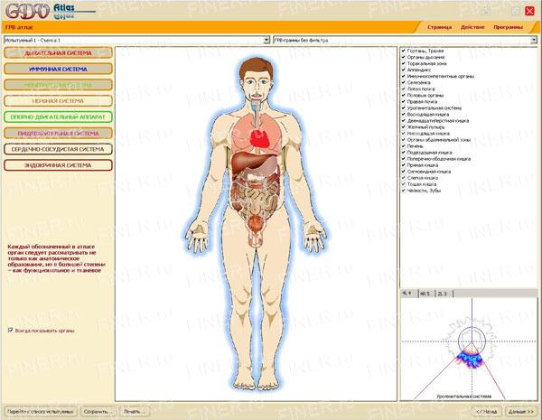 GDV Atlas (ГРВ атлас) - программа для прибора ГРВ